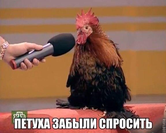 Центробанк РФ в пятницу продал еще $1 млрд для стабилизации рубля: за пять дней на спасение российской валюты потратили $3,6 млрд - Цензор.НЕТ 9905
