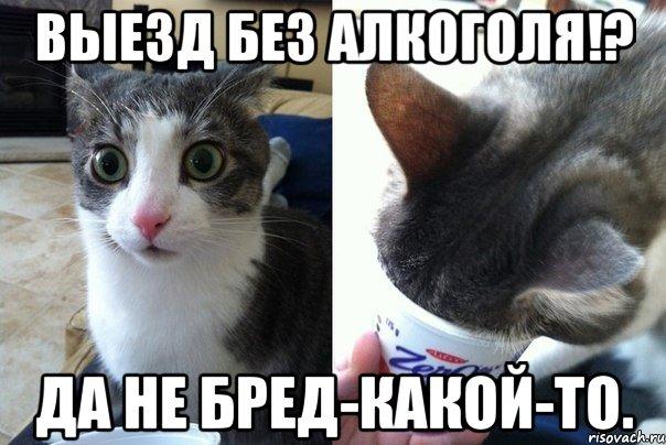 da-ne-bred-kakoy-to_63217512_orig_.jpeg