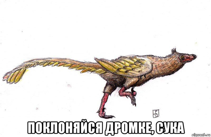 http://risovach.ru/upload/2014/11/mem/567_66410650_big_.jpg