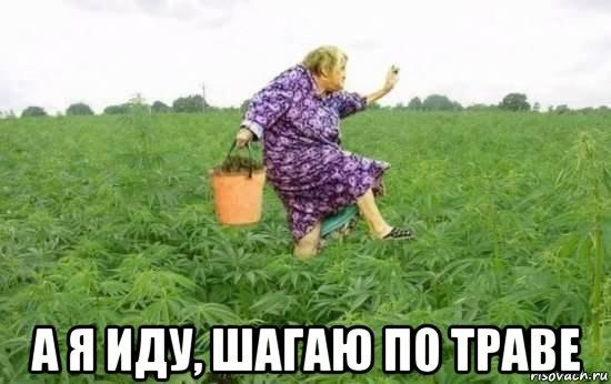 http://risovach.ru/upload/2014/11/mem/f_67434914_orig_.jpg
