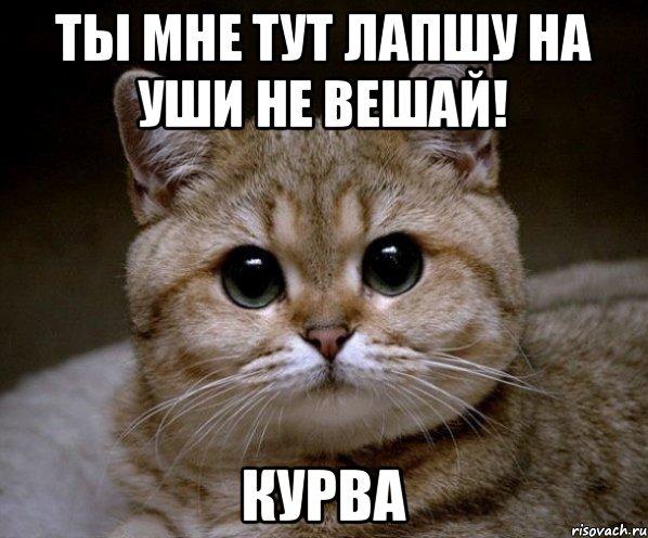 http://risovach.ru/upload/2014/11/mem/pidrila-ebanaya_65607187_orig_.jpeg