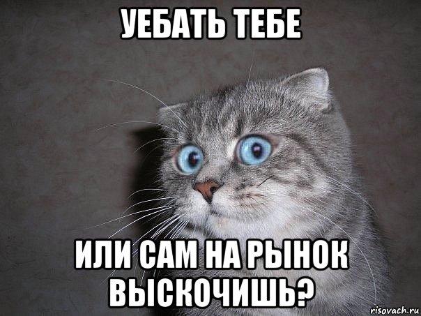 bolshoy-shlang-devchonke-zasunuli-v-zhopu-polnostyu