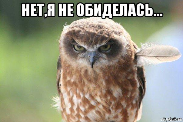злая сова картинки