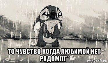 Я чувства