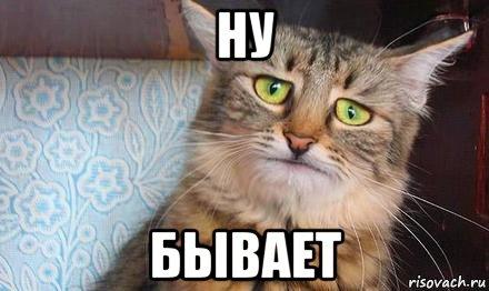 kot-pechal_69073450_orig_.jpg