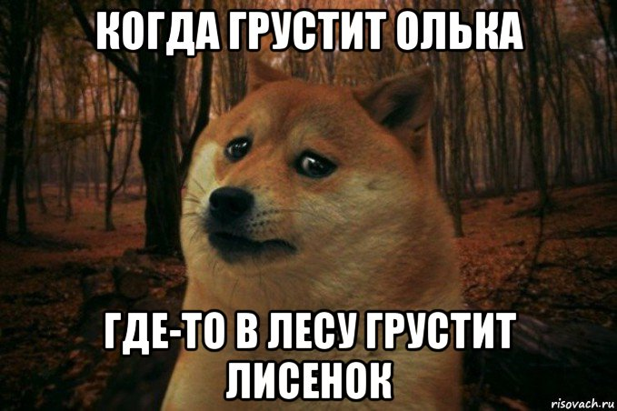 картинки не грусти лисёнок видов