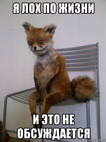 http://risovach.ru/upload/2015/01/mem/uporotaya-lisa_72698085_orig_.jpg