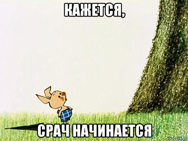 srach_74079566_orig_.jpg