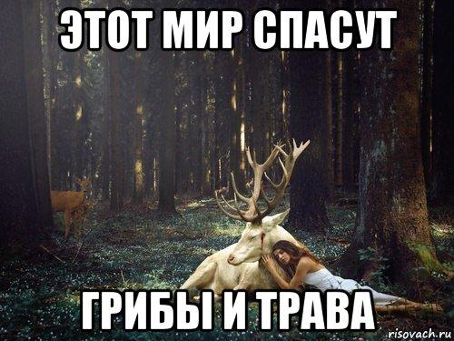 tipichnaya-allienna_73498549_orig_.jpg