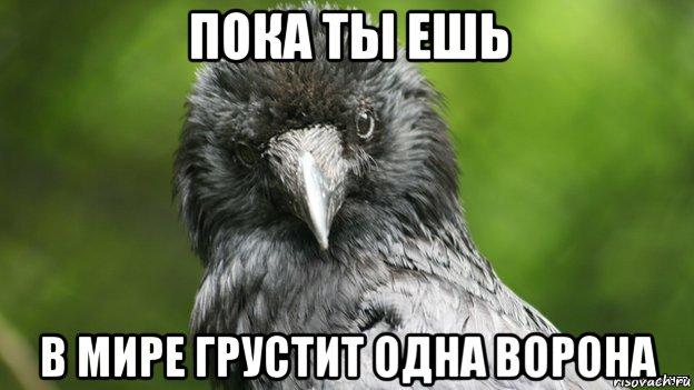 детей режим сонник ч мему снится одна ворона дымогенератор, одной загруки