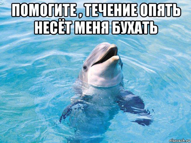 http://risovach.ru/upload/2015/03/mem/delfin_75749869_orig_.jpg