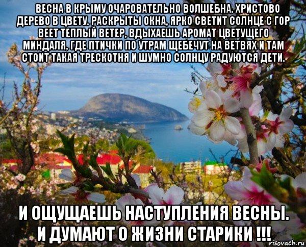 хорошей стихи о крымской весне 2014 года для красоты Массажеры