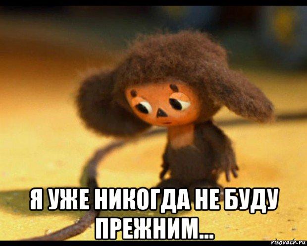 cheburashka_79671607_orig_.jpg