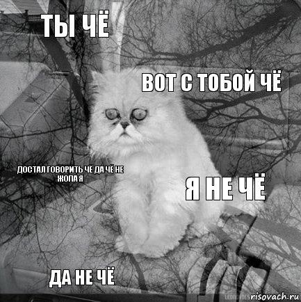 ты чё я не чё: