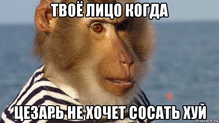 zastavlyayut-sosat-i-ebut-v-zhopu