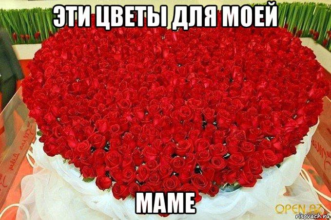 цветы фото для мамы