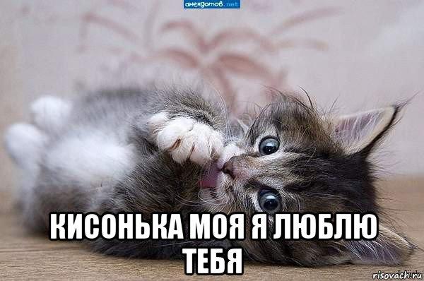 myagkaya-golaya-devushka