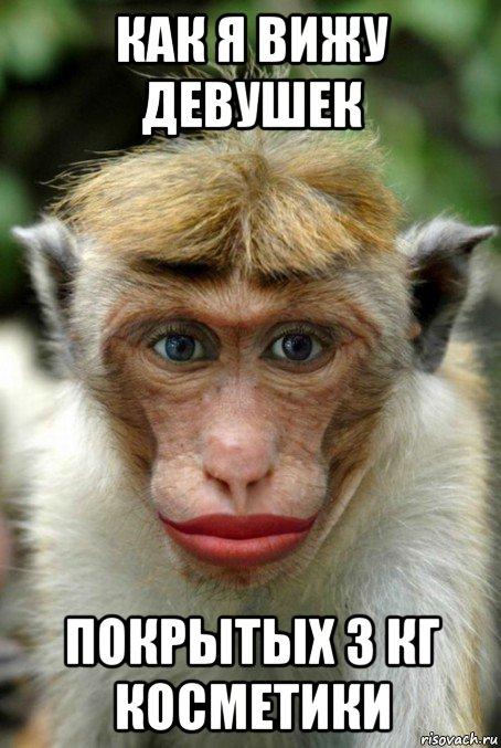 Monkey makeup
