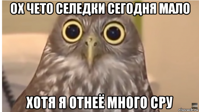 tetya-ofigela