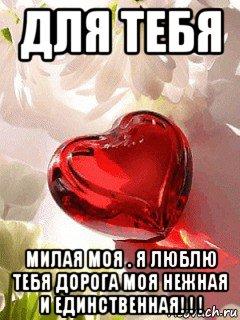 милый я тебя обожаю картинка