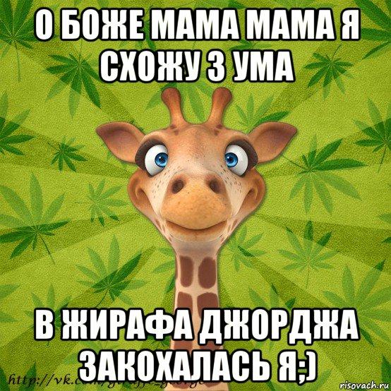 выборе мама я схожу с ума чем