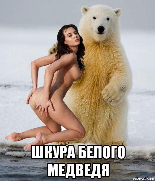 Фото медведя приколы шлюха