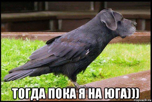 porno-s-perevodom-porno-ru