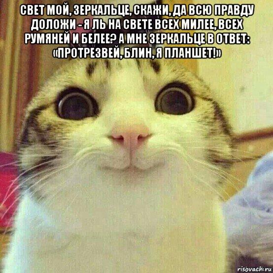 http://risovach.ru/upload/2015/12/mem/kotyaka-ulibaka_99755008_orig_.jpg