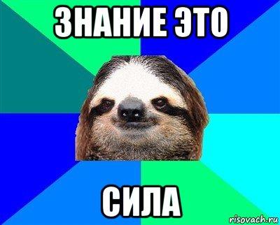 lenivec_103198241_orig_.jpg