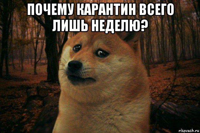 russkie-pyan-v-porno