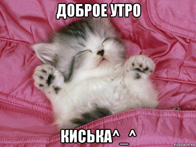 с добрым утром котята картинки