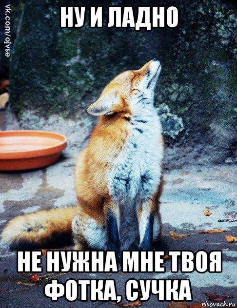 foto-pizdi-devushek-zapolnennoy-spermoy