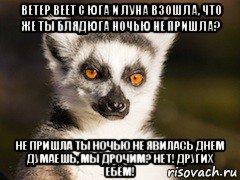 i-luna-vzoshla-chto-zhe-ti-blyadyuga