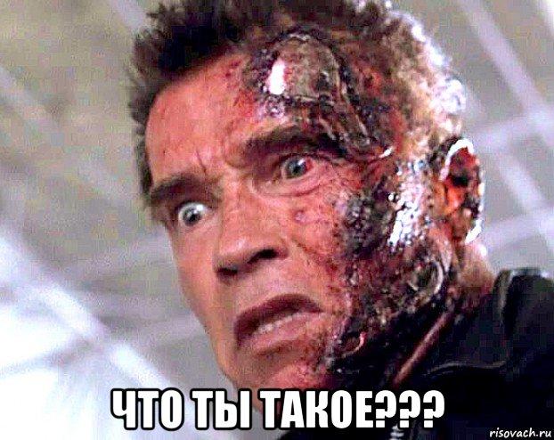 Arnold predator meme