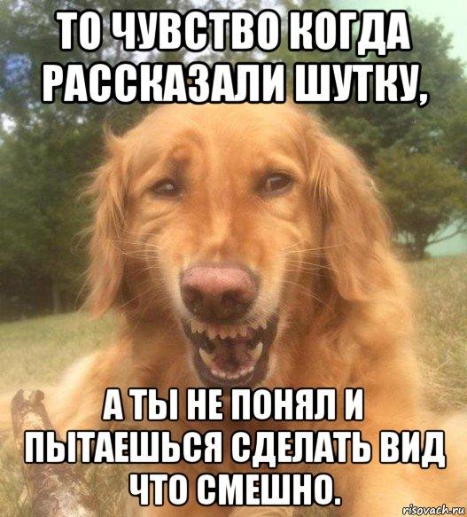Сейчас Я Тебе Расскажу Анекдот