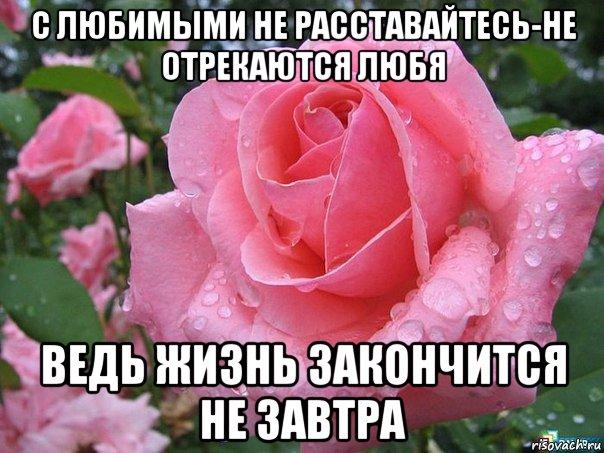 devushki-soblaznyayut-seks-foto