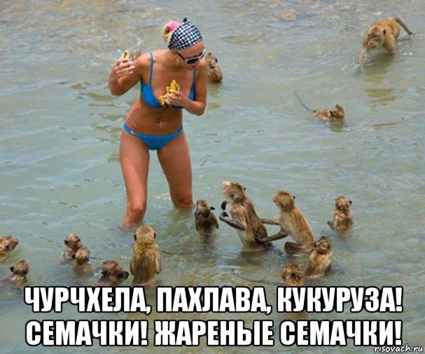 Легковушка врезалась в БТР в оккупированном Крыму: 2 человека погибли - Цензор.НЕТ 7549
