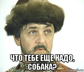 ivan-vasilevich_118465059_orig_.jpg