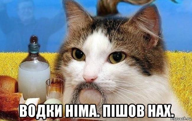 За полгода турпоток из Украины вырос на 46%, - посол Турции Тезель - Цензор.НЕТ 7376