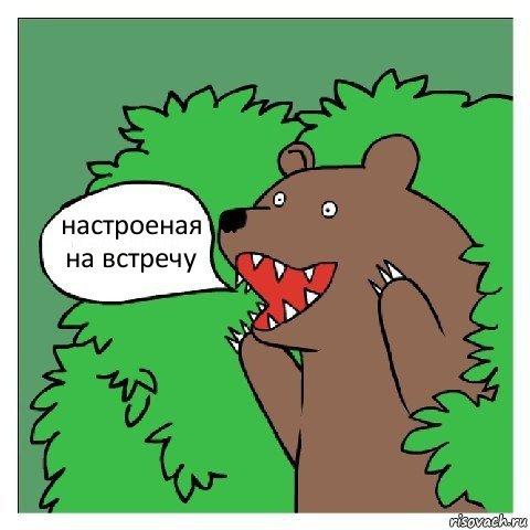 медведь проститутка