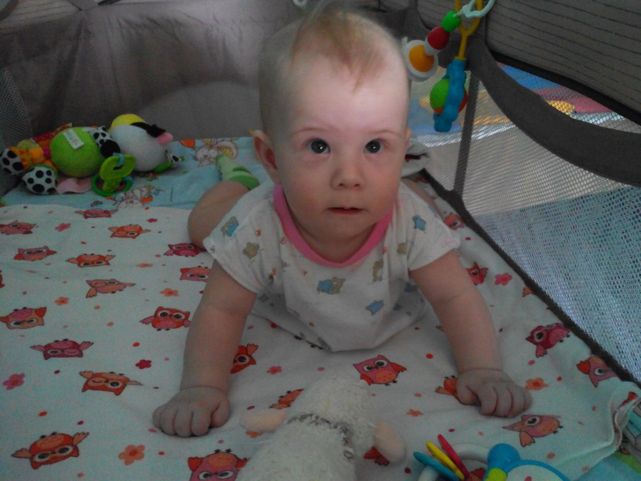 Фото в 6 месяцев ребенку
