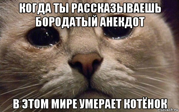 v-mire-grustit-odin-kotik_143192251_orig
