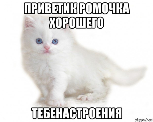 http://risovach.ru/upload/2017/04/mem/ya-tebya-obozhayu--dobroe-utro-solnc_141953532_orig_.jpg