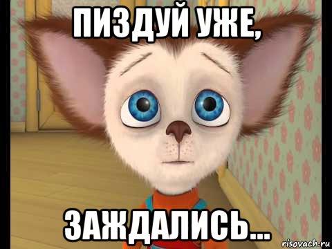 malysh-barboskin-pechal_165163738_orig_.jpg