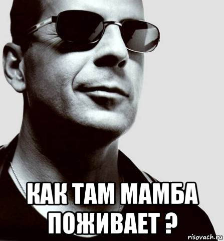 Мем мамба