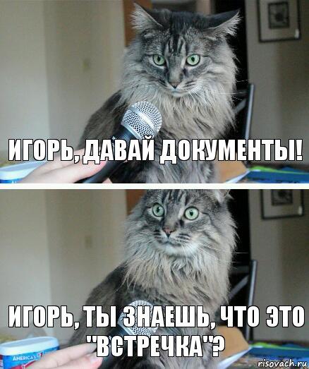 kot-s-mikrofonom_176793127_orig_.jpg