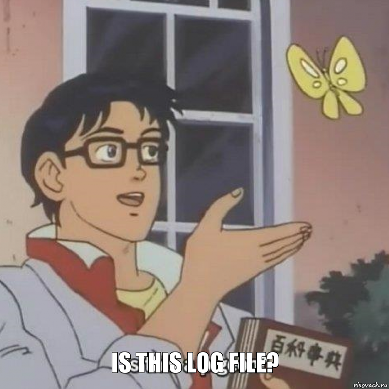 is this log file?