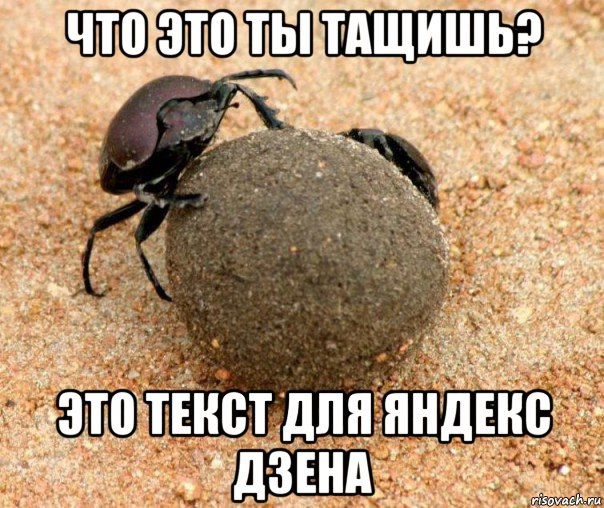 http://risovach.ru/upload/2018/07/mem/zhuk-navoznik_182158709_orig_.jpg