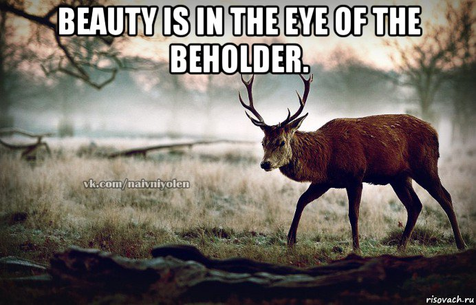 beauty is in the eye of the beholder. , Мем naivehole