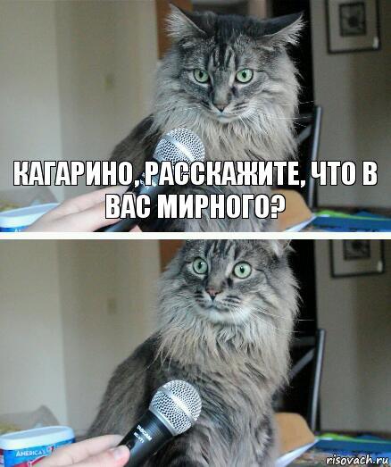 http://risovach.ru/upload/2019/07/mem/kot-s-mikrofonom_213601322_orig_.jpg